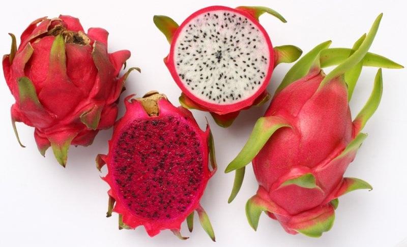 Ejder Meyvesi Üretiminde Siparişlere Yetişemiyor