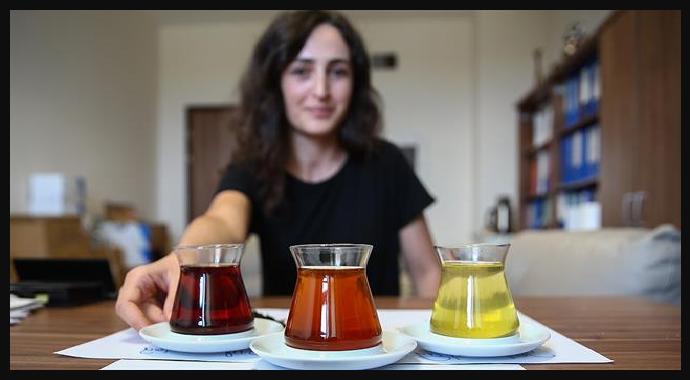 Türkiye'de İlk Oolong Çayı Üretildi