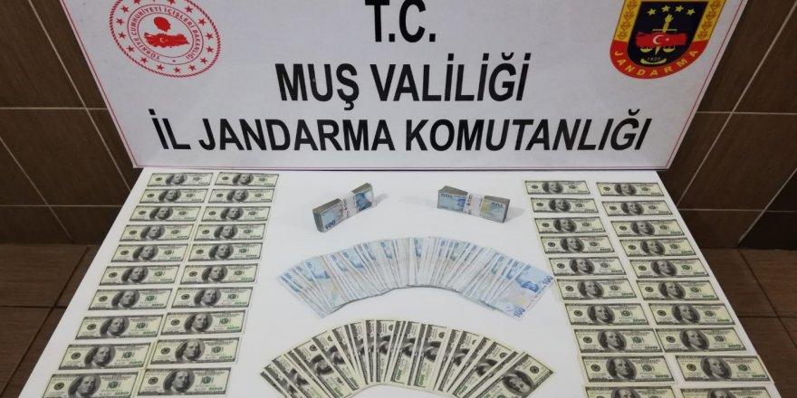 Muş'ta Sahte 100 Dolar Operasyonu
