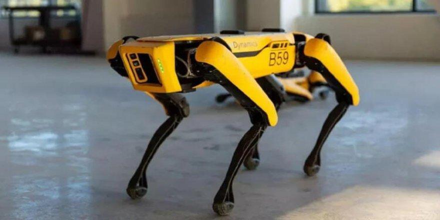 O Robotlar Artık Devriye Geziyor!