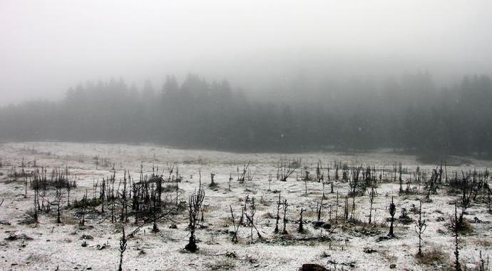 Bolu'ya İlk Kar Düştü