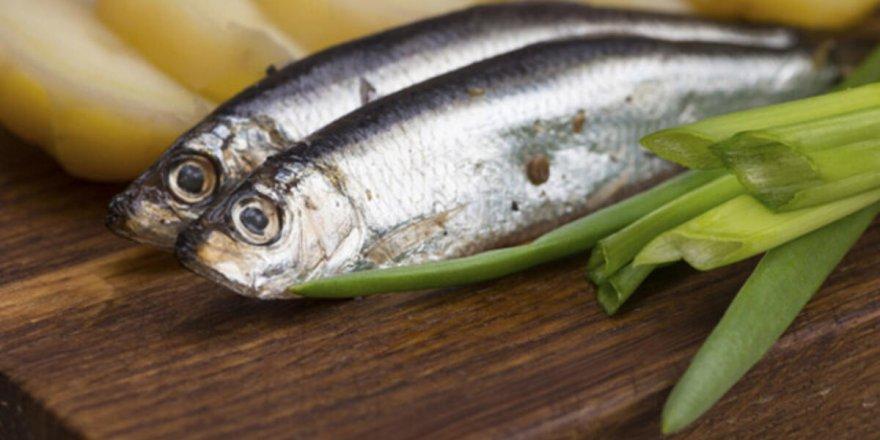"""Balıkçılar: """"28 Ocak'ta Güzel Balık Yiyeceğiz"""" Bu Tarihte Ne Olacak? Balık Fiyatlarında Son Durum"""