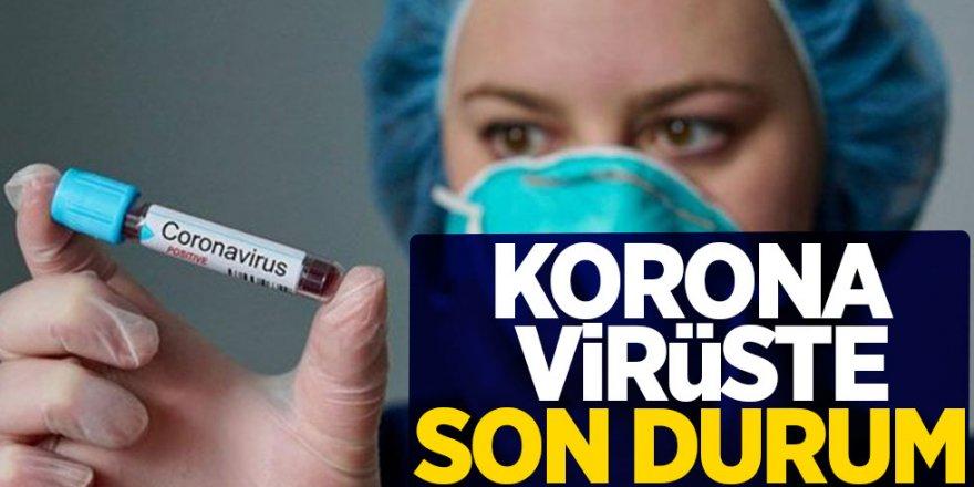 Sağlık Bakanlığı Açıkladı: yeni vaka sayısı düşüşe geçti